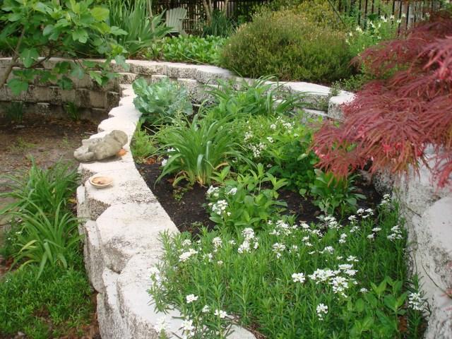 wilmington-garden-008