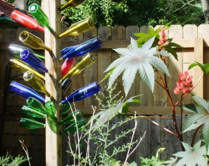 Bottle trees and castor bean plants grow with equal vigor.